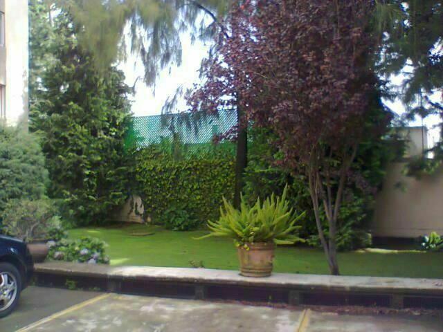 3 de 8: Jardín