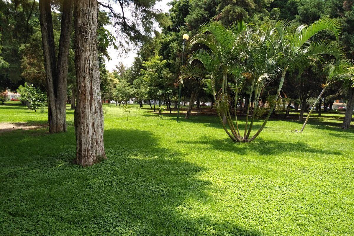 47 de 50: Hermoso parque enfrente