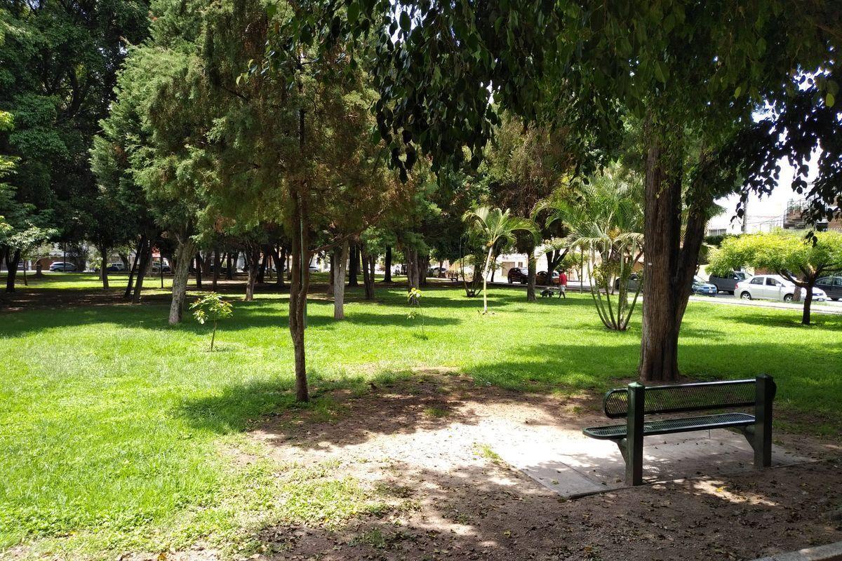 49 de 50: Parque enfrente muy arbolado y cuidado
