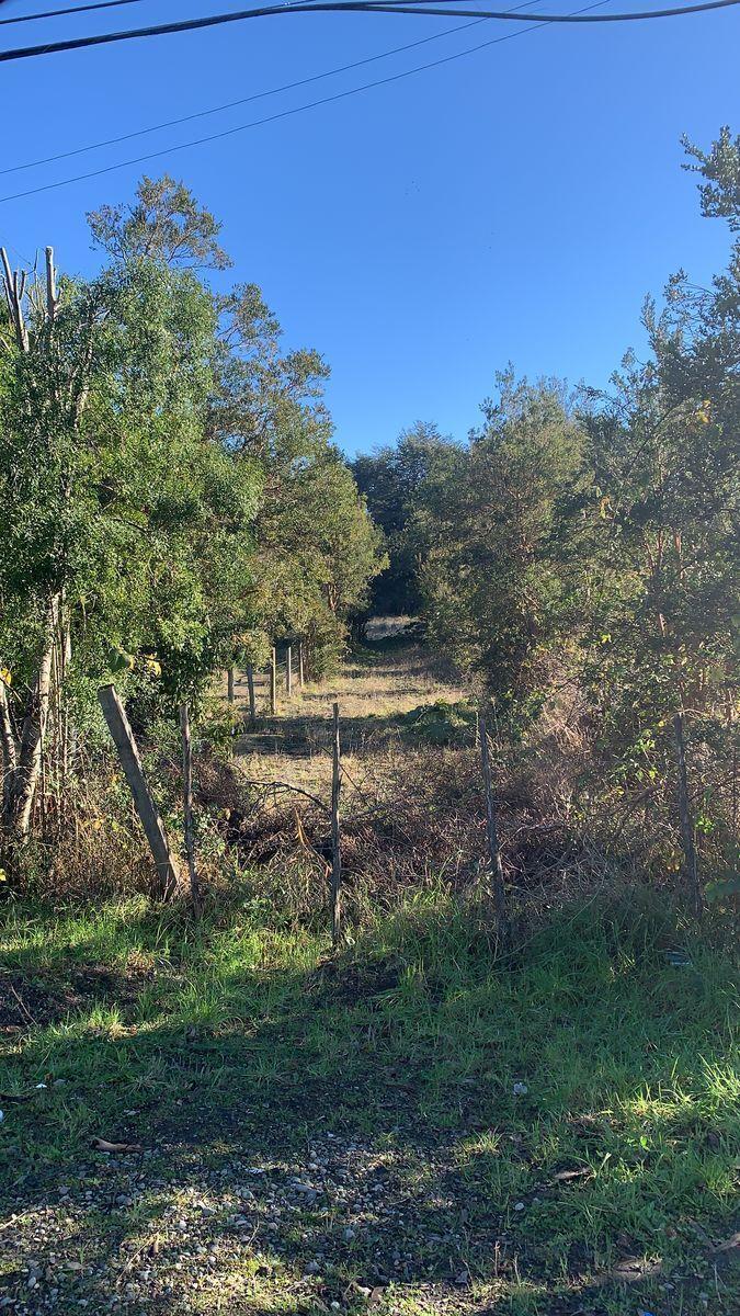 2 de 18: Vista parte frontal del terreno por ruta 225