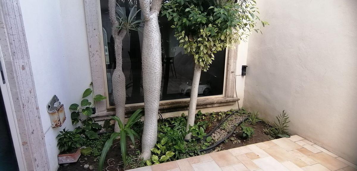 5 de 17: jardin interior