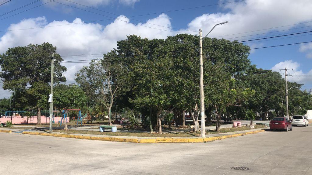 5 de 14: Parque Cerca, permite mas lugar de estacionamiento