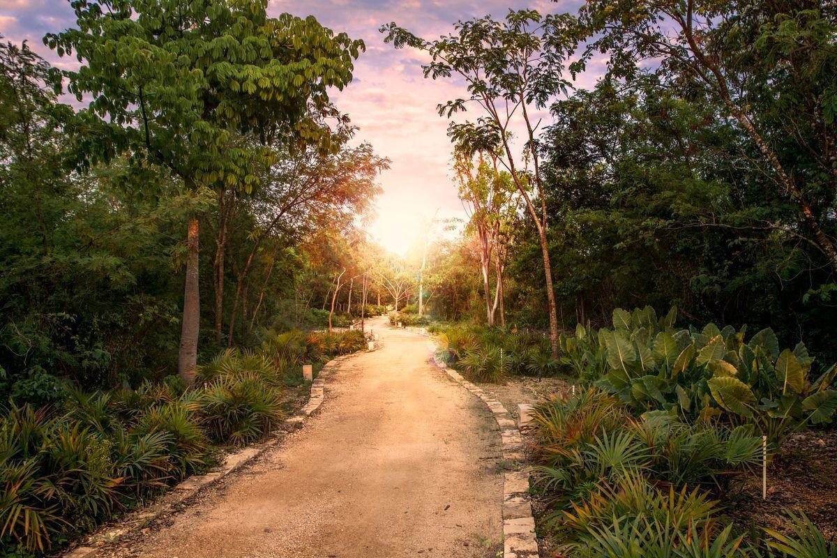 10 de 10: Áreas verdes