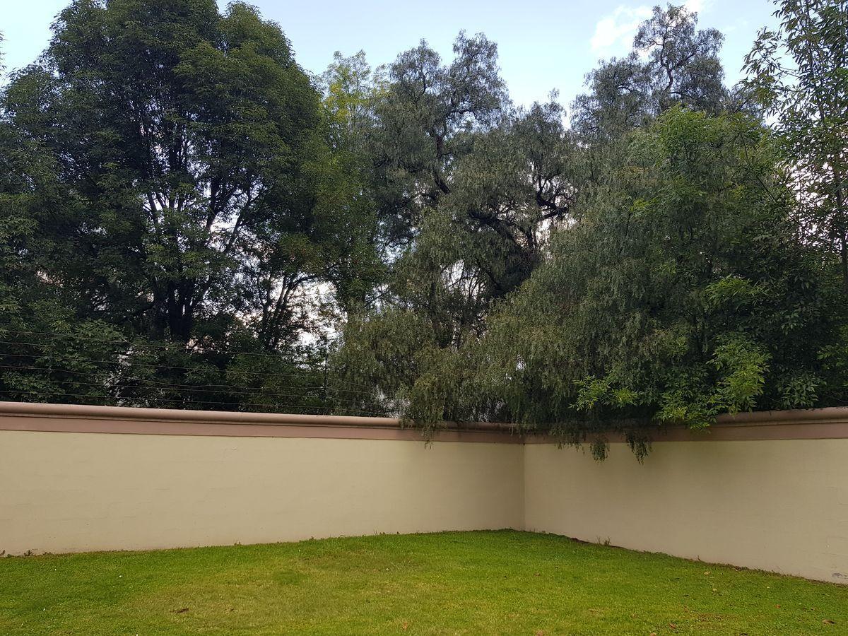 19 de 27: Jardín de la privada
