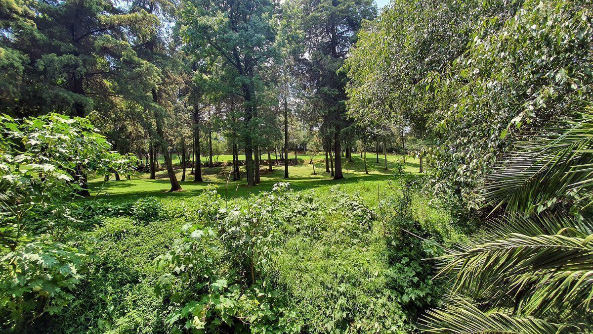 9 de 18: Vista boscosa del campo chico de golf