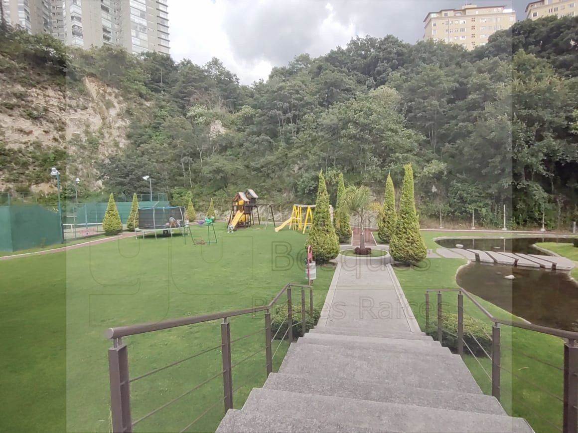 21 de 35: Jardín