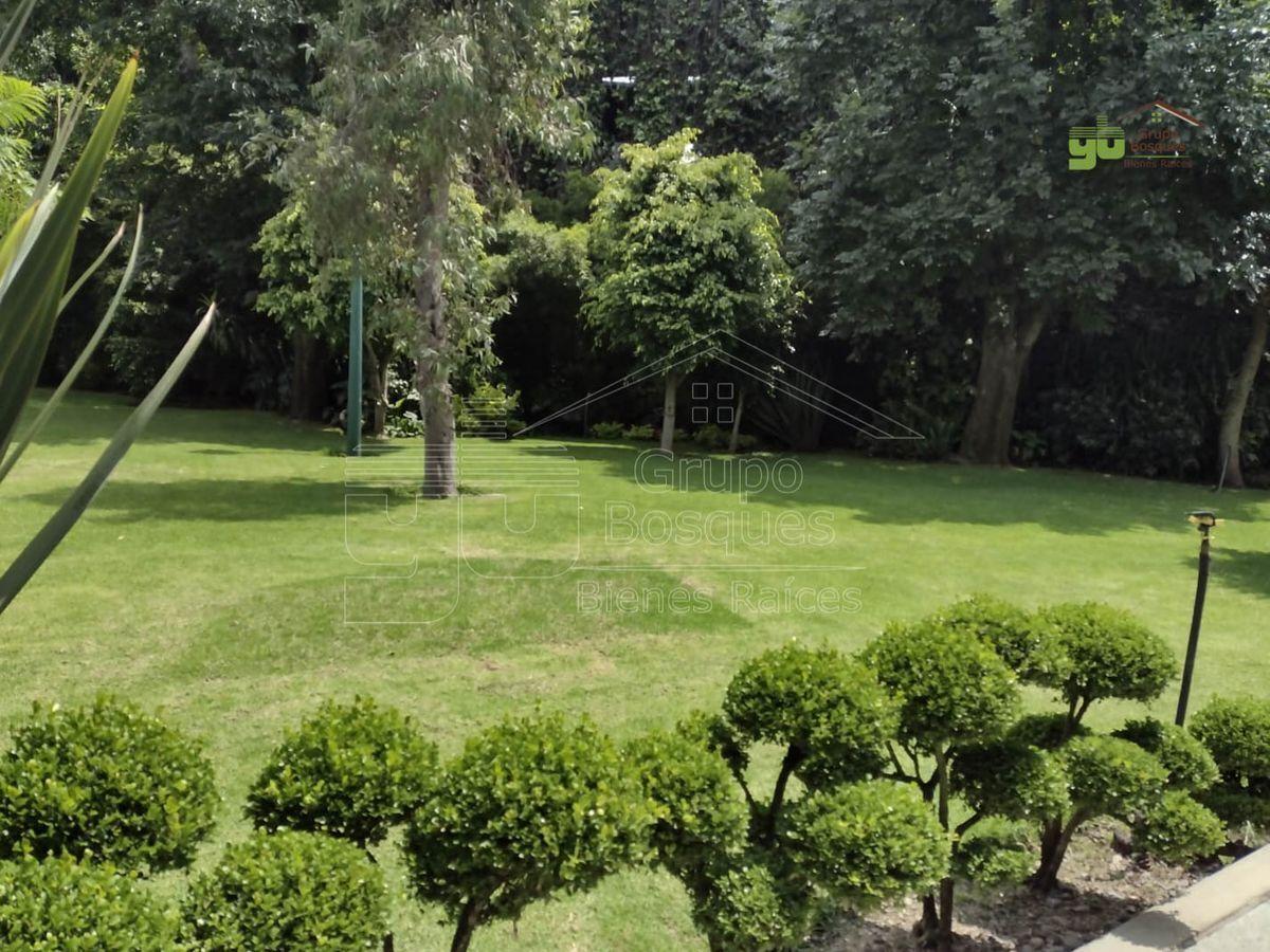 19 de 20: Jardín