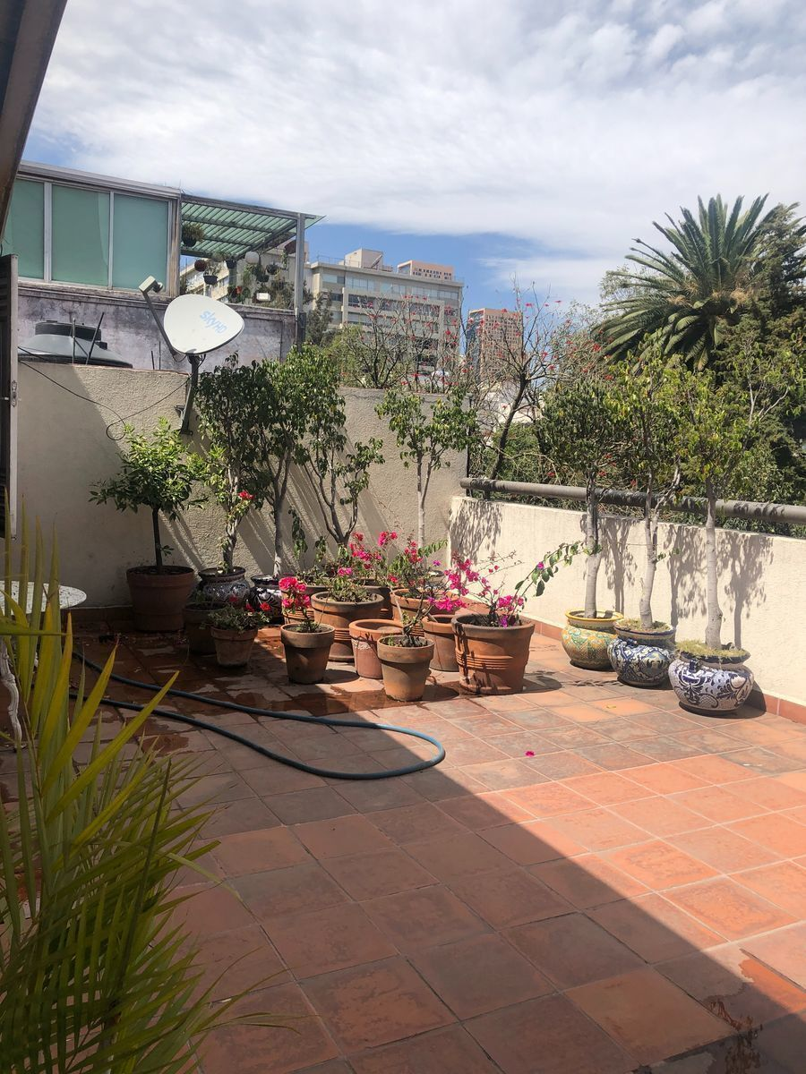 22 de 23: Piso 3 Roof Garden
