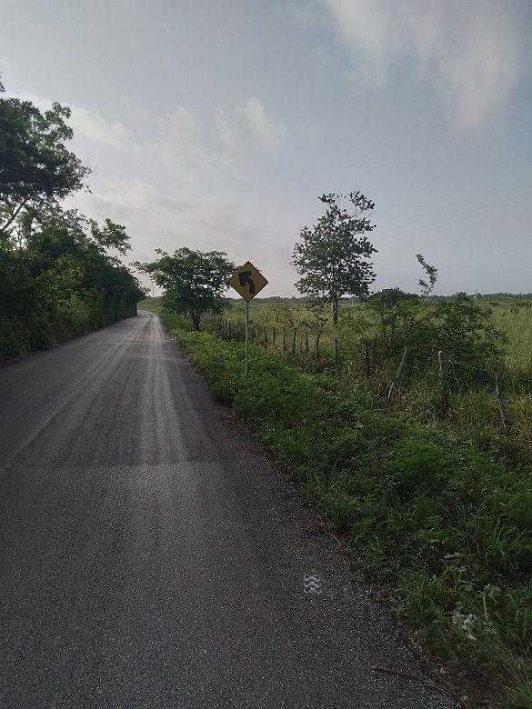 2 de 20: Carretera pavimentada de frente de la plantación