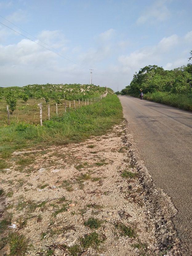 18 de 20: orilla de la carretera con el predio
