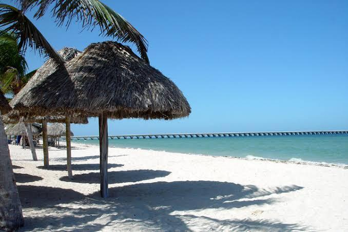 5 de 10: A 10 minutos de la Playa (Puerto Progreso Yucatán)
