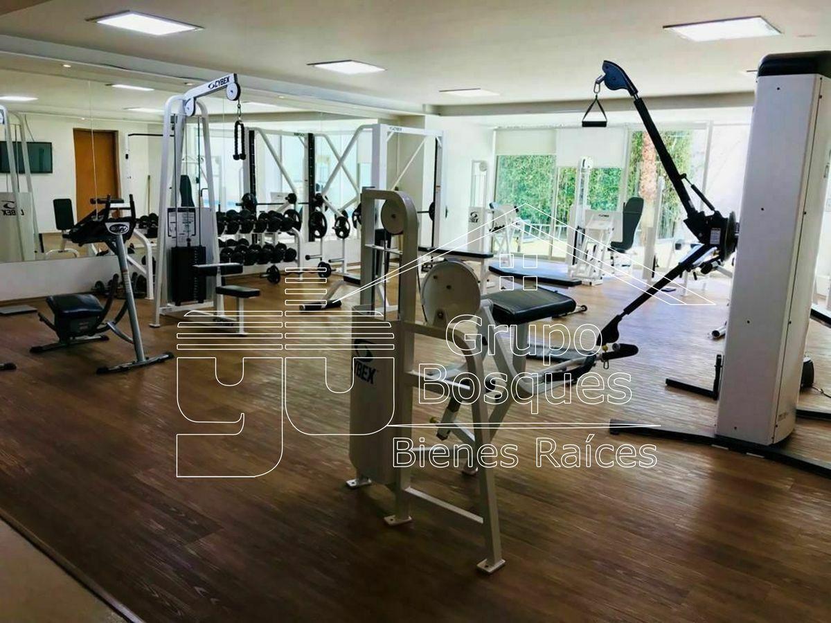 38 de 41: Gym