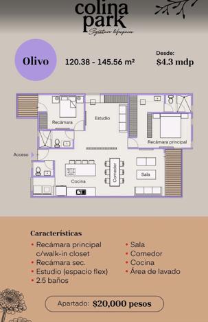 10 de 11: MODELO OLIVO  2 RECAMARAS Y ESTUDIO