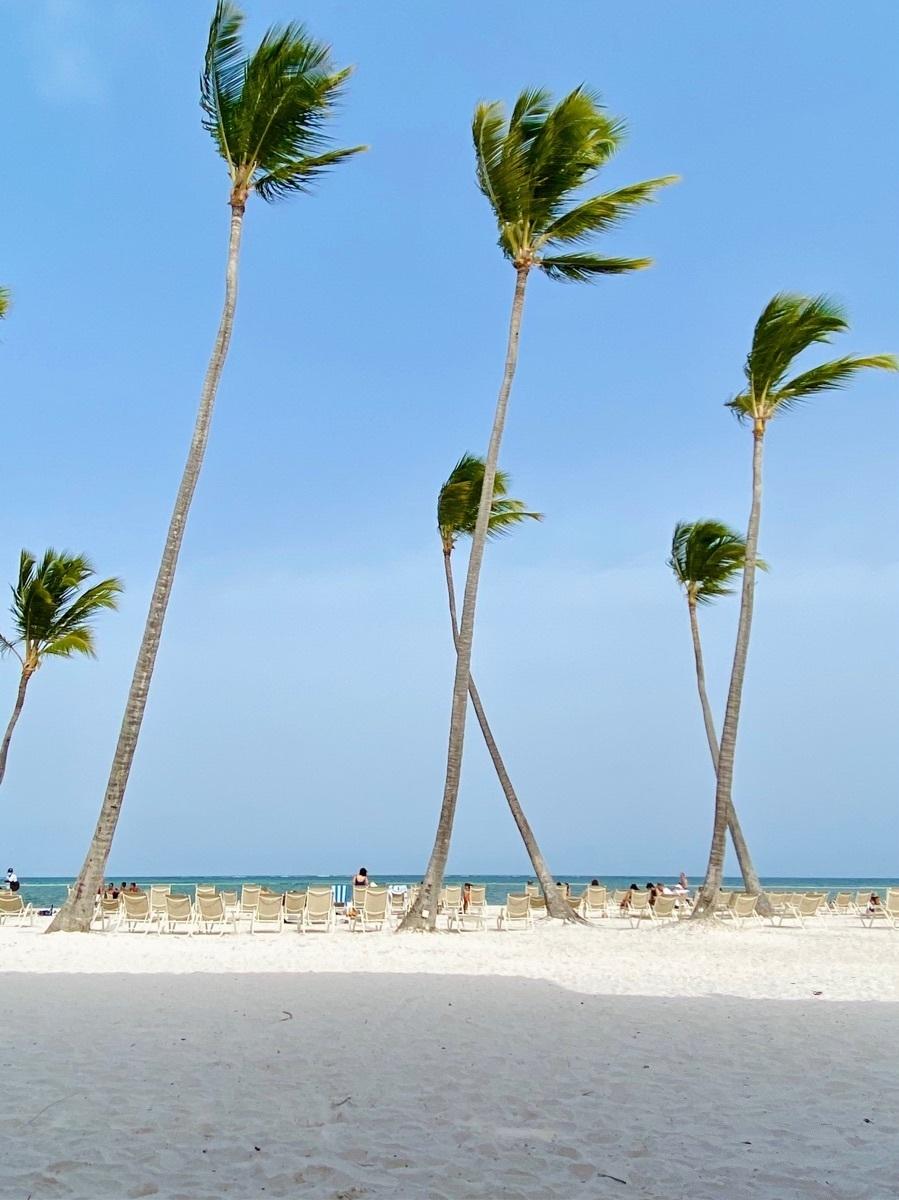 17 de 19: Playa Juanillo