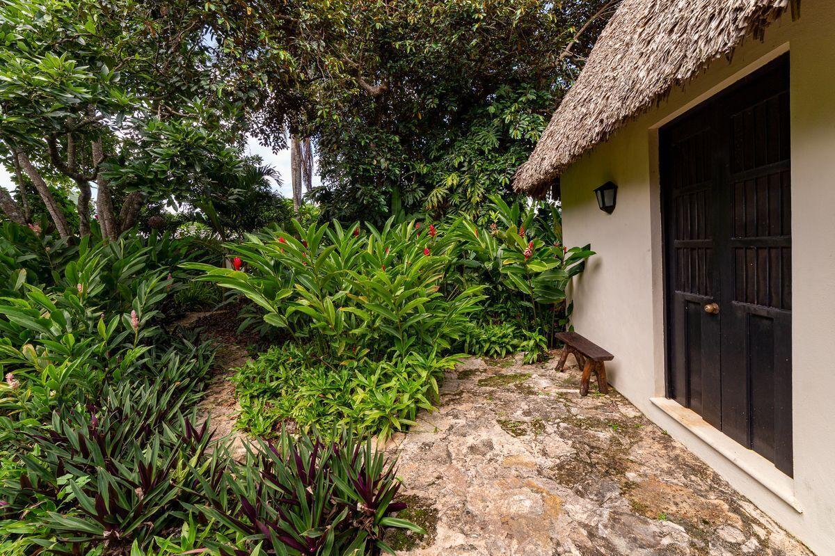 12 de 47: Casa maya