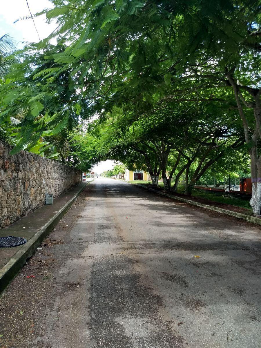 3 de 47: Calle de acceso vía Izamal