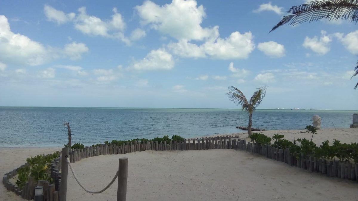 32 de 41: Club de playa