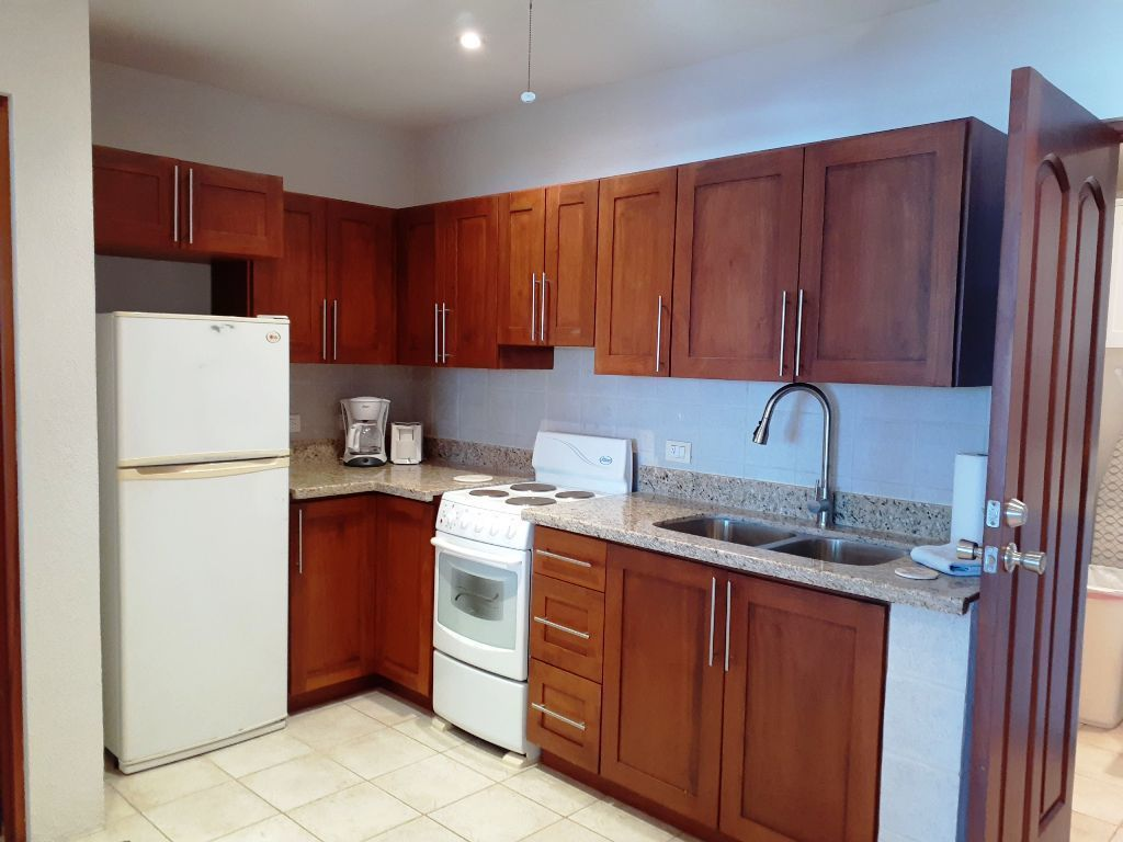 16 of 18: Lower Floor Kitchen