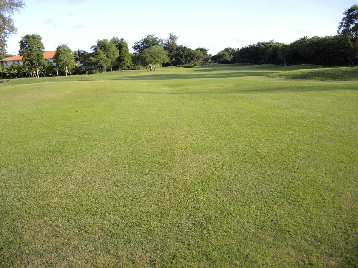 17 de 17: Otra vista al campo de golf, lateral