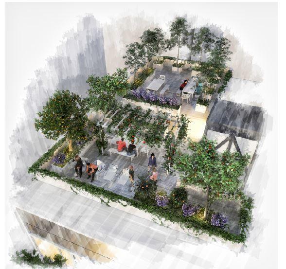 24 de 24: Roof garden
