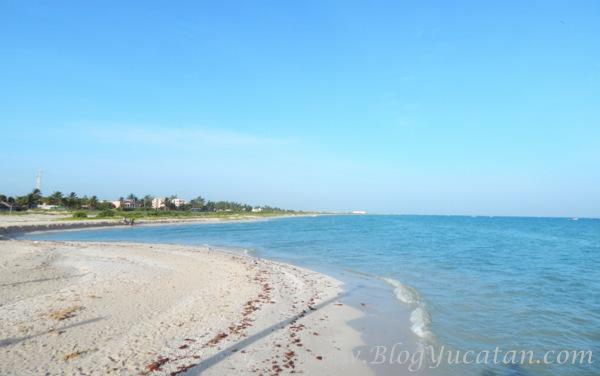 13 de 17: Terreno en Venta Frente al Mar  Sisal, Yuc. Chichen Realty