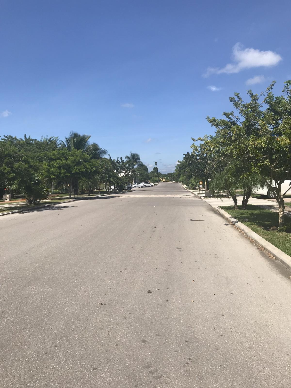 18 de 30: Amplias Calles arboladas