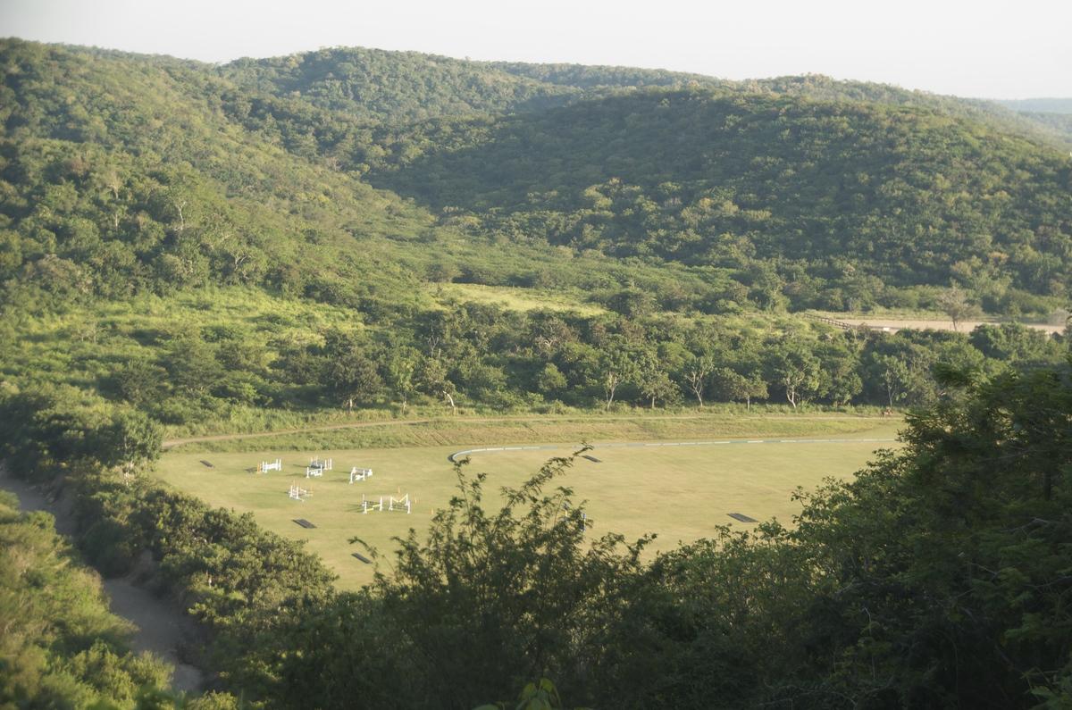 10 de 24: campos de equitacion