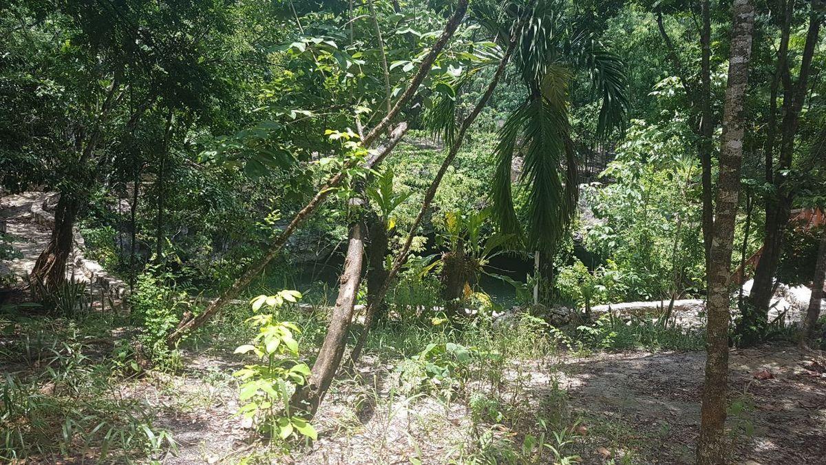 3 de 19: terreno en el sur de cancun