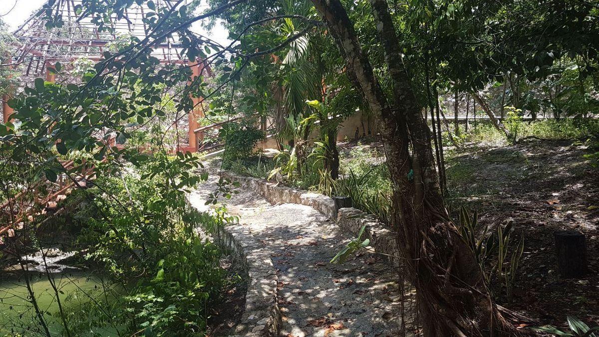 4 de 19: terreno en cancun con cenote