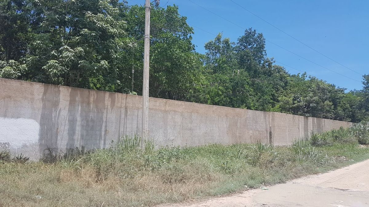 6 de 19: terreno en venta cancun con cenote