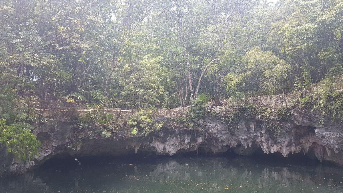 9 de 19: cenote