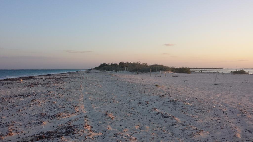 2 de 15: Venta terreno en isla blanca