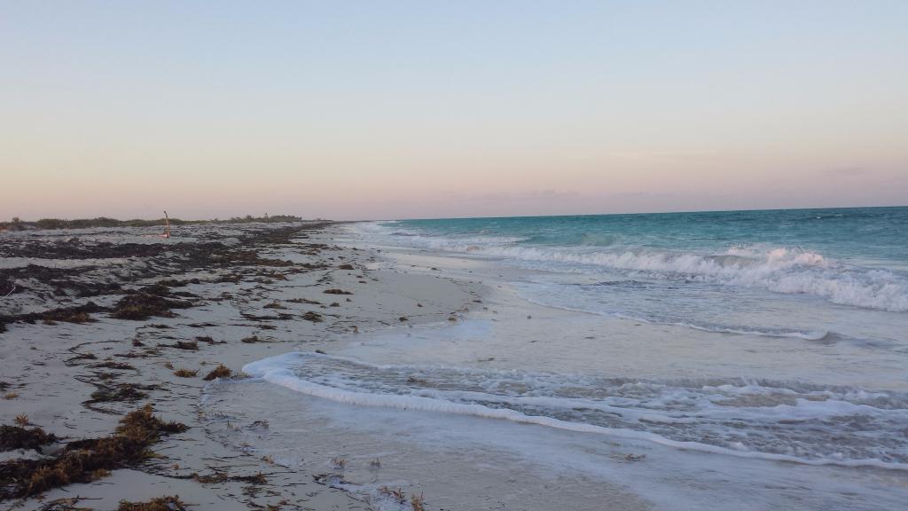 3 de 15: terreno con playa en isla blanca