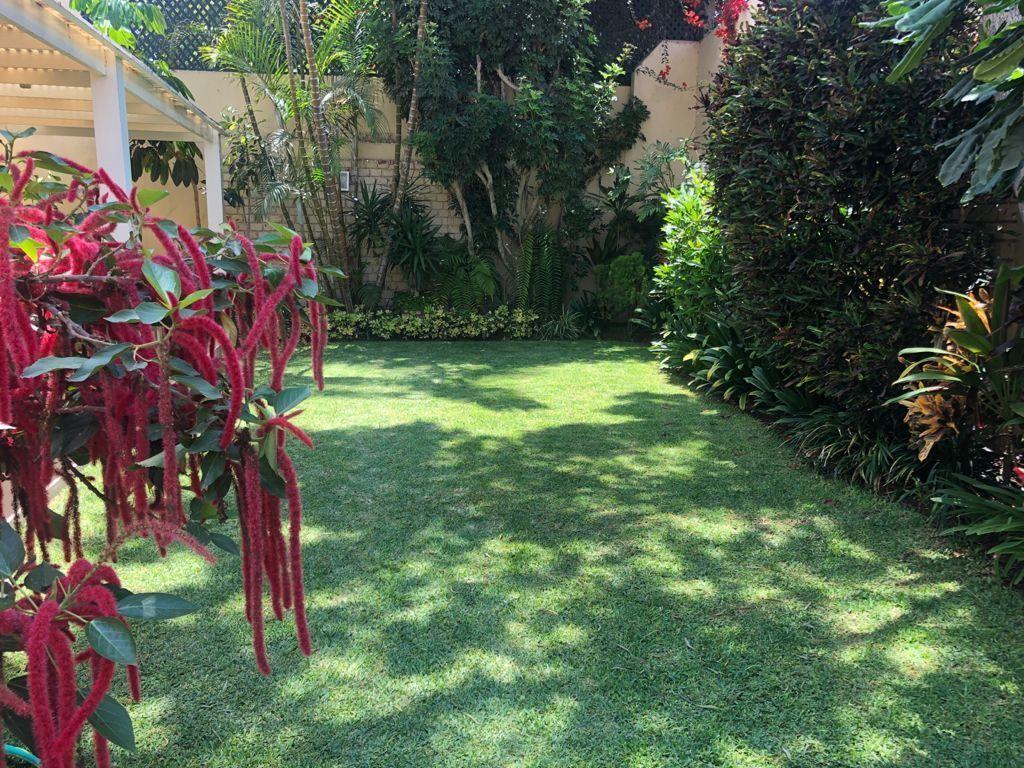 7 de 19: Hermoso jardín.