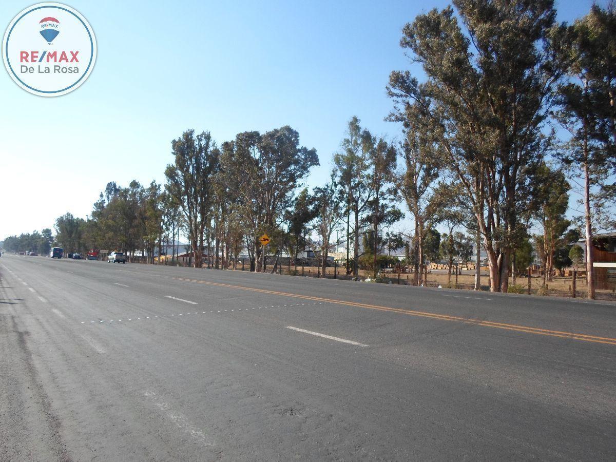 12 de 13: Entorno   (  cruzando carretera)