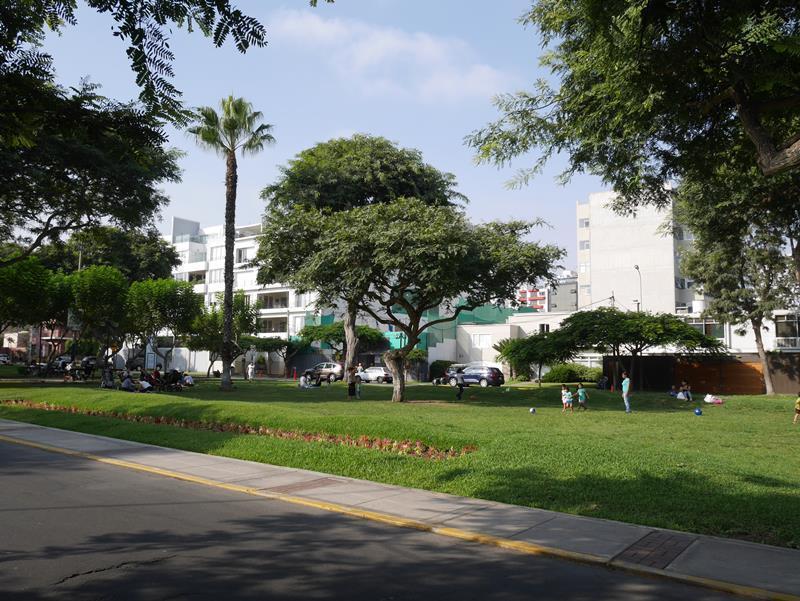 19 de 21: Exclusivo Parque Melitón Porras...escuchar video pajaritos