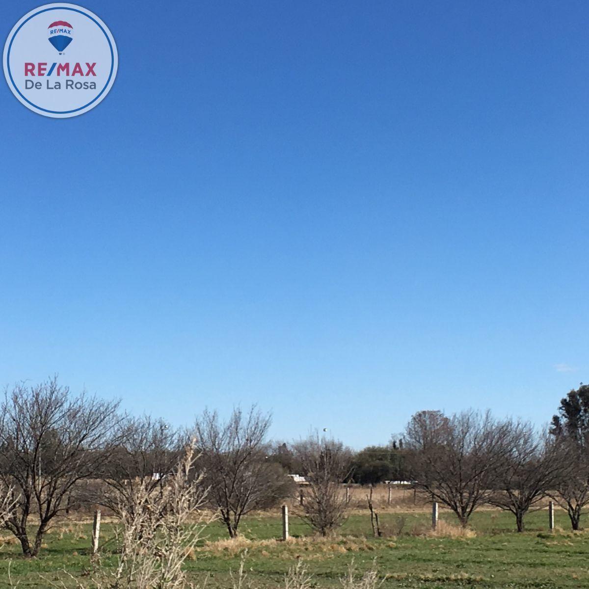 7 de 8: Vista del terreno
